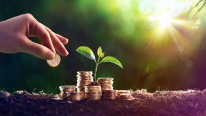 High-tech Actualité : Microsoft et l'écologie : entre «solutionisme technologique» et «greenwashing»