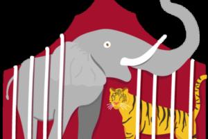 Animaux Pourquoi les cirques avec animaux sont-ils critiqués ?
