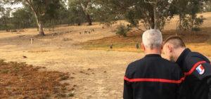 Ecole Lutte contre les feux de forêts : 5 experts français en Australie