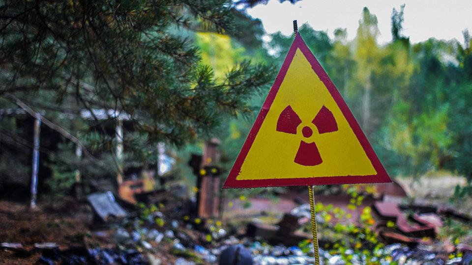 Animaux Fukushima : là où les êtres humains ont disparu, la faune s'est largement développée