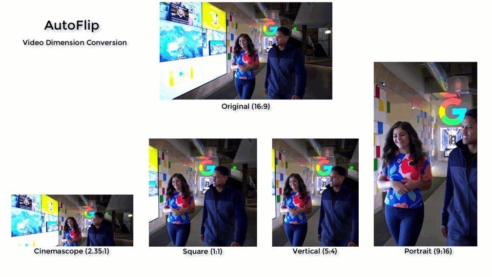 Animaux Google : AutoFlip recadre intelligemment les vidéos à la verticale