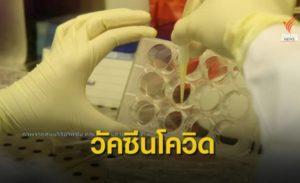 Maillot de bain THE EXIT : จุฬาฯ เตรียมทดสอบวัคซีนโควิดในคน