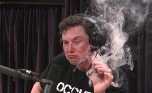 Maillot de bain Elon Musk neemt rust na Dogecoin en Bitcoin gekte