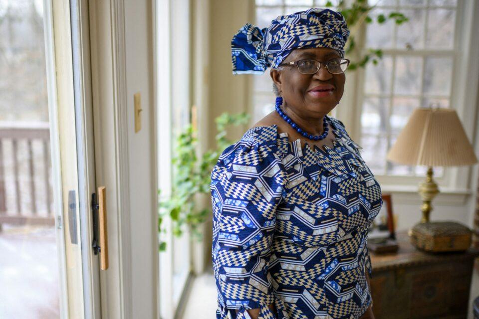 Maillot de bain With Adesina, Okonjo-Iweala and others, Nigeria attains Human Useful resource Energy procedure below Buhari