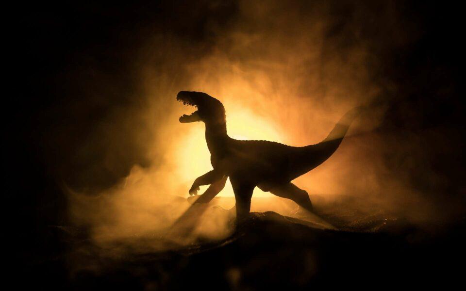 Maillot de bain Les tyrannosaures auraient chassé en meute comme les loups !