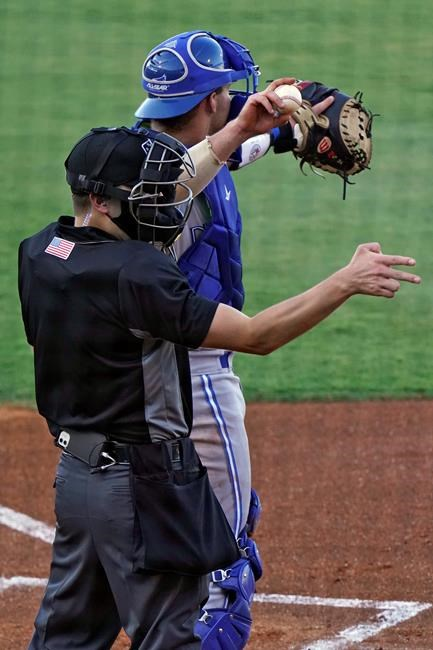 Maillot de bain Robotic umps and canines, minor league ball support after misplaced year
