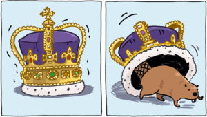 Maillot de bain Seek info from an Knowledgeable: What Would It Resolve to Proceed the Monarchy?