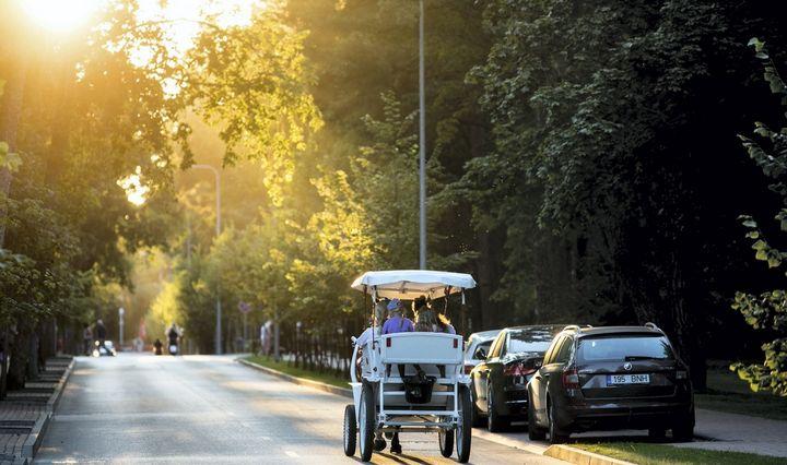 Maillot de bain Palangos centre pabrango automobilių parkavimas, brangti gali ir Kaune