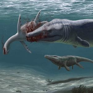 Maillot de bain Raně křídovým mořím Česka vládli bizarní příbuzní krokodýlů
