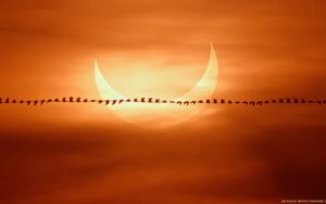 Maillot de bain Si vous avez manqué l'éclipse du Soleil, voici les plus belles photos