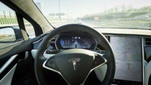 Maillot de bain Youngster soll für 10.000 Greenback Tesla-Machine gekauft haben