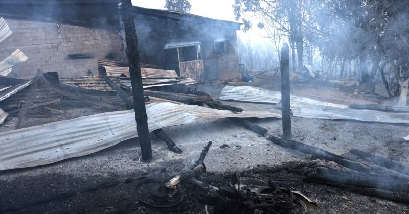 Maillot de bain Greece begins to depend price after a week of devastating fires – Reuters