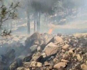 Maillot de bain Kilis'te çıkan orman yangını büyümeden söndürüldü