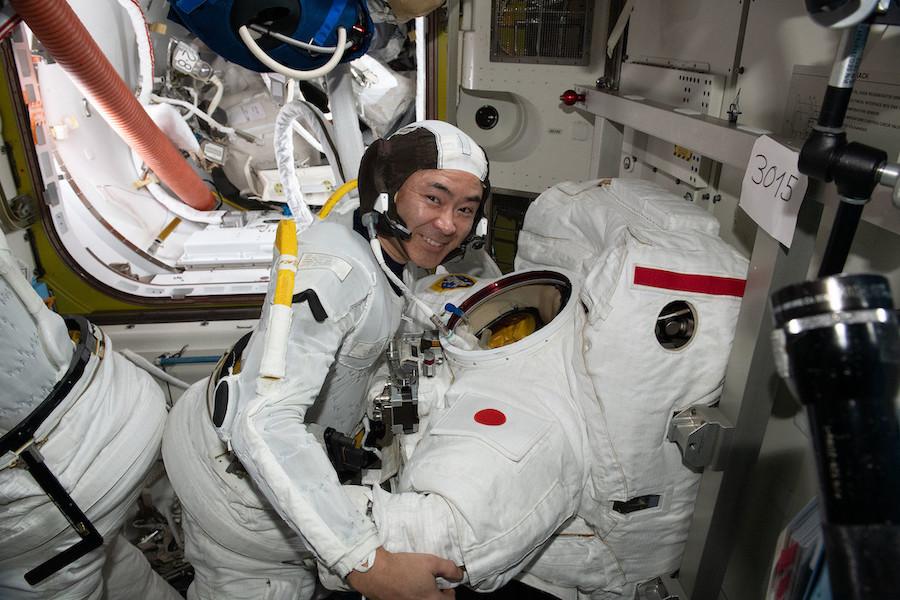 Maillot de bain Watch are residing: NASA spacewalk underway in ongoing solar array enhance work